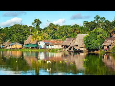 Viking Oceans: From the Caribbean to the Amazon