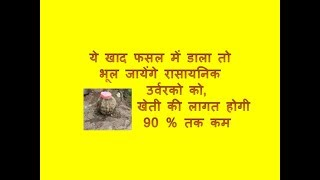 jaivik khad essay in hindi जैविक खेती सस्ती तो है ही, जीवन और जमीन को बचाने के लिए भी जरूरी है.