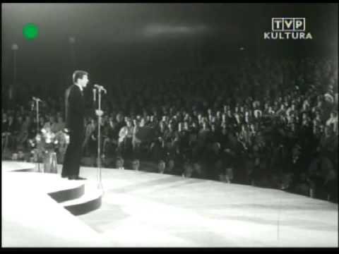 Kot Teofil (live)