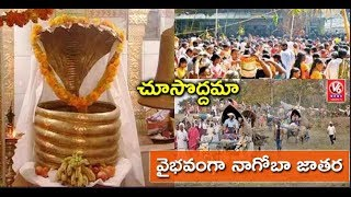 Nagoba Jatara Begins On A Grand Note | Adilabad