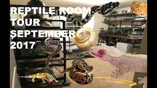Reptile room tour September 2017