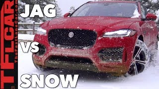 Does This Cat Have Snow Claws? Jaguar F-Pace AWD vs Colorado Blizzard Review