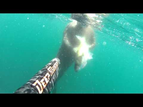 UKRAINIAN SPEARFISHING TEAM VIGO 2012 Ляденко Лаврак