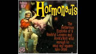 Watch Hormonauts Turkey Jive video