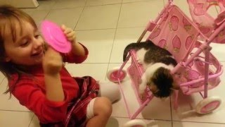 3 years old girl is feeding a kitty