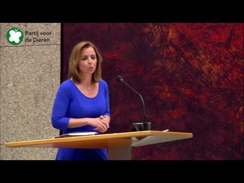 Bijdrage Marianne Thieme tijdens formatiedebat