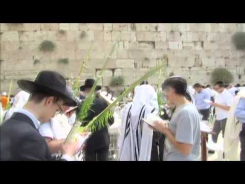 Hosanna - in a Jewish liturgy - a cycle of prayers during Sukkot