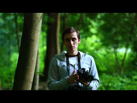 Частное мнение про камеры Olympus серии OM-D