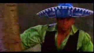 Watch Chixdiggit Spanish Fever video