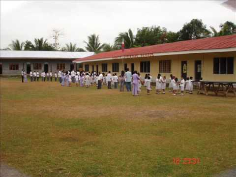 Trinity Christian School Pics