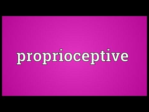 Header of proprioceptive