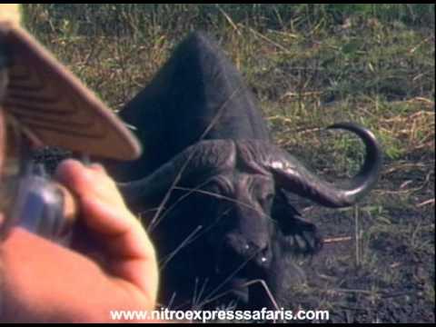 Lov Afrika III.