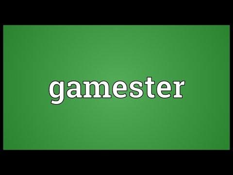 Header of gamester