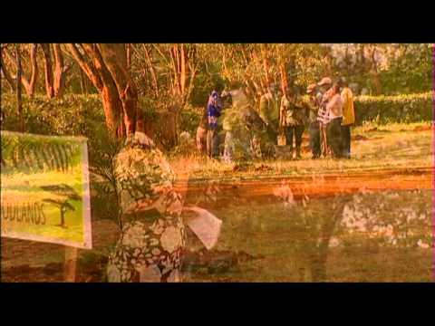 Makutano Junction - Environmentalism Thumbnail
