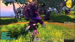 RaiderZ Beta Ön İnceleme - Part2