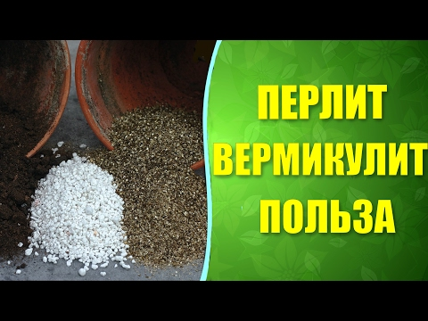 🌱 Польза от применения перлита и вермикулита для растений. Разрыхлители почвы перлит и вермикулит.