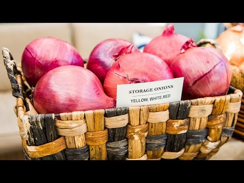 Shirley Bovshow's Tips to Growing Perfect Onions