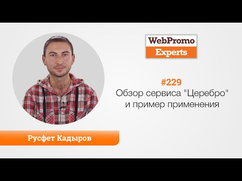 """Обзор сервиса """"Церебро"""" и пример применения. Русфет Кадыров. TV #229"""