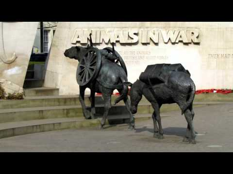 Animals in War Memorial Southgate Essex