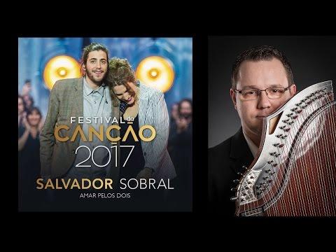 Luisa & Salvador Sobral - Amar Pelos Dois (Zither-Cover)
