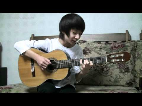 (Antonio Banderas) Cancion Del Mariachi - Sungha Jung