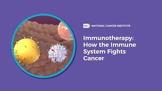 Immunotherapy: How the Immune System Fights Cancer