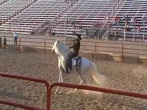 el-sinaloense-a-caballo-bruno-valente-video-en-evento.html