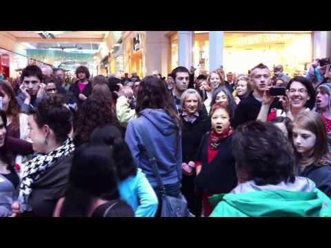 Christmas Flash Mob Sings Hallelujah Chorus at Washington Square Mall, Portland