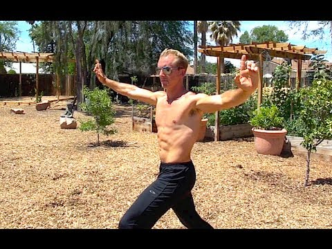 Tiger Crane Kung Fu - New Video - Part 3
