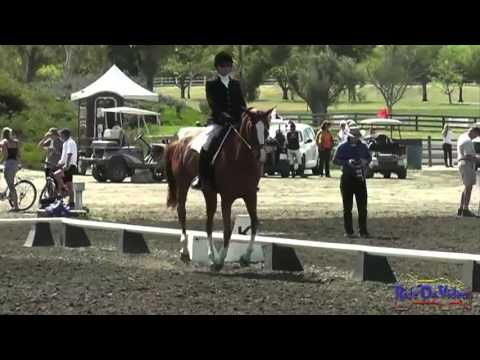 222D Lisa Sabo Open Training Dressage Galway Downs Int'l HT March 2013