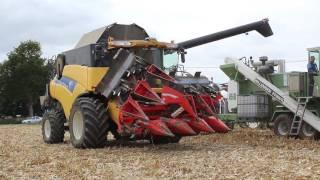 Enorme Broyeur Willemsen FF8W/K l Battage maïs grain 2016 l NH CR x2 l ETA Bernard