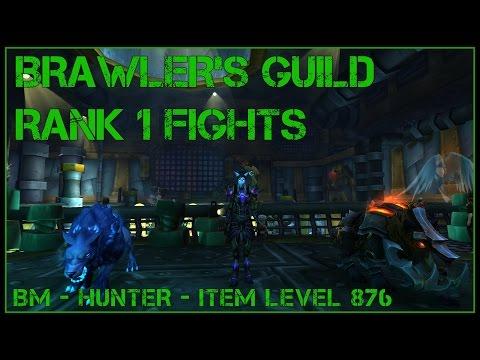7.1.5 Brawler's Guild - Quick Guide and Strats - BM Hunter - Rank 1 Bosses