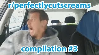 r/PerfectlyCutScreams Perfectly Cut Screams Compilation #3