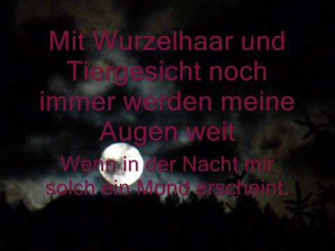 In Extremo - Vollmond - Lyrics