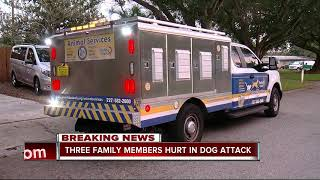 Dog stabbed to death after attacking Safety Harbor family