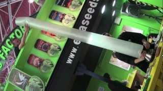 Spannabis 2013 with Eva Seeds (English version)