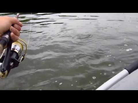 сплав по кии рыбалка видео
