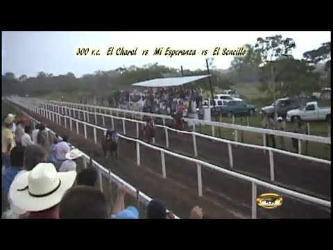 Final de Cardenas 2010 Puro Caballo