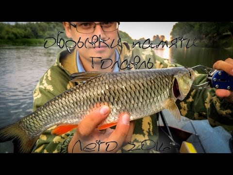 рыбалка на башкирии бери  реке белой видео летом