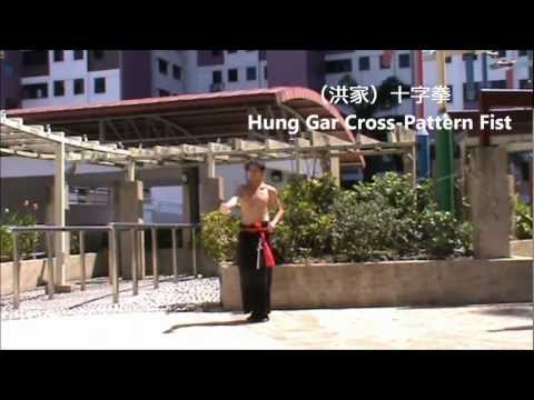 #2nd Form : Hung Gar Cross-Pattern Fist (洪家)十字拳 Image 1