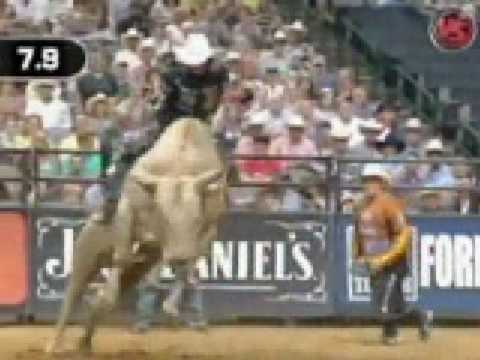 PBR Video. Music: Song: Cowboy to the Core Artist: PBR Allstars.