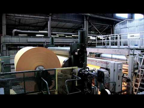 From Tree to Paper | How paper is made | The Office Supplies Supermarket
