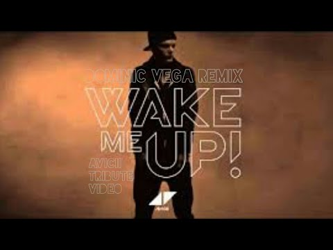 Avicii - Wake Me Up (Dominic Vega Remix)(Avicii Tribute Video)