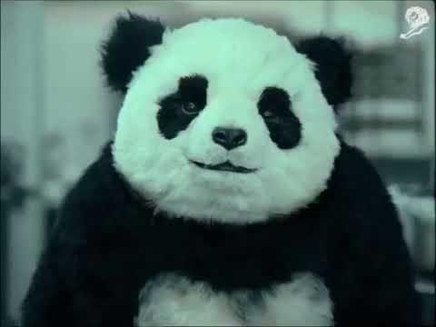 Panda Cheese Commercial  English Subtitles