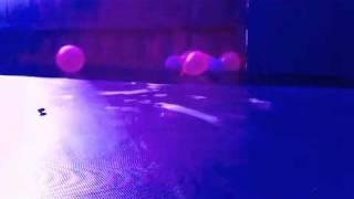 Watch Blue Dogs Birds video