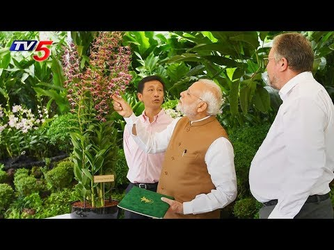 PM Modi Singapore Tour Ends | Highlights | TV5 News