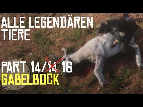 RED DEAD REDEMPTION 2 | JAGEN | ALLE LEGENDÄREN TIERE PART 14/14 Der Gabelbock