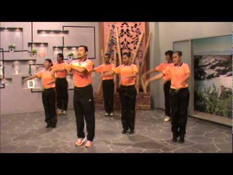 Senam Seni 1 Malaysia (edisi 2 2011 jkkn-spm rtm) video