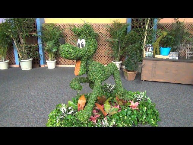 Epcot Flower & Garden 2015 Festival Center Tour w /Merchandise, Topiary, Anna & Elsa Maquettes