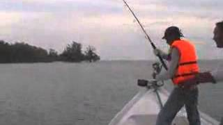Extreme Fishing - Giant Trevally (GT) 20Kg Hook Up | Aryo